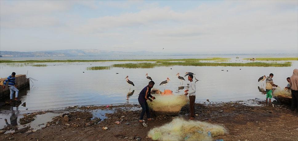 lago-hawassa