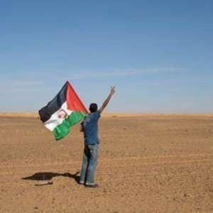 Sahara Occidentale, I Progetti Dell'Ansps E La Resistenza Del Popolo Saharawi